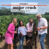 Major Crush Season 1: Ep 2 Calistoga AVA & Chris Madrigal